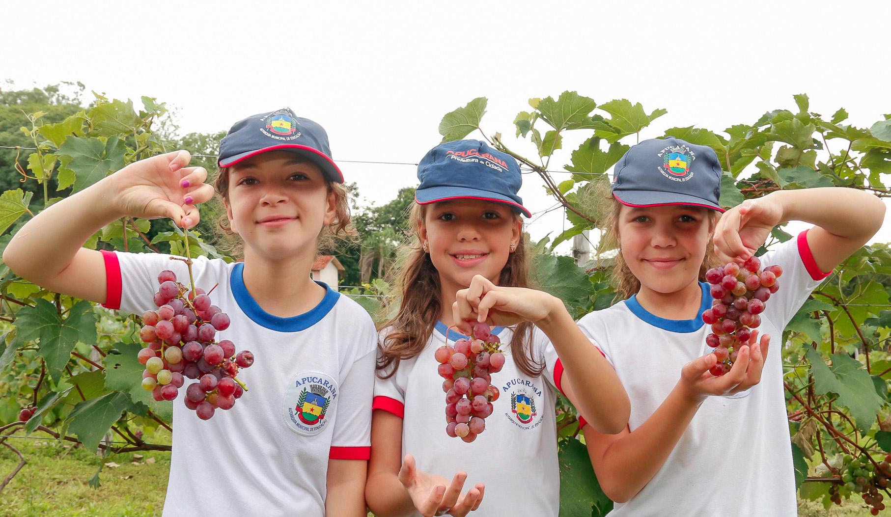 Cardápios da alimentação escolar para o mês de março