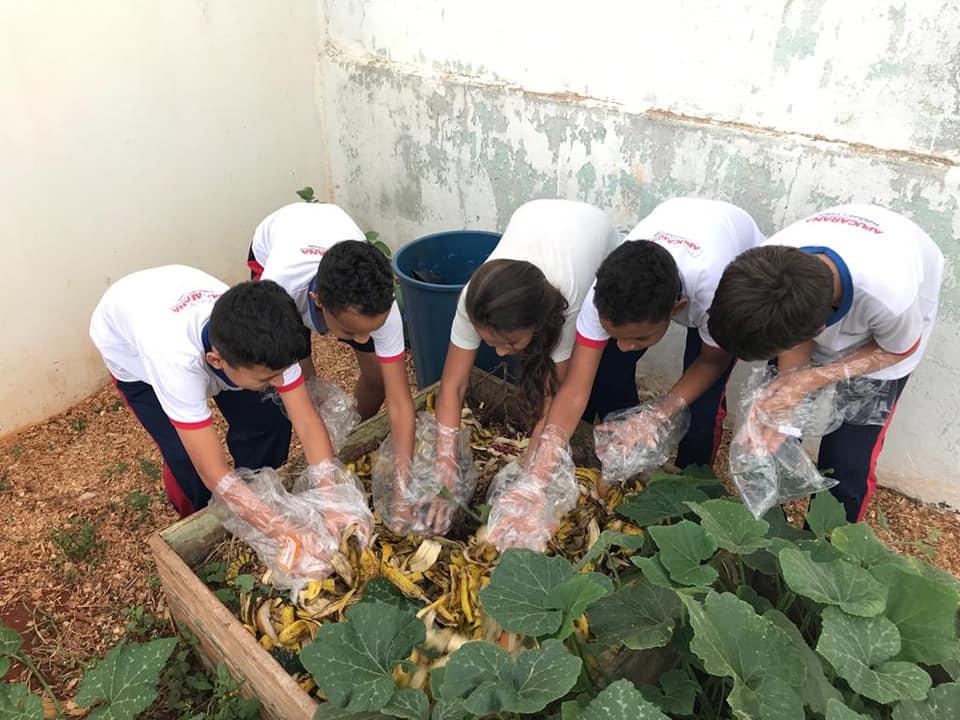 Alunos aprendem compostagem nas escolas de Apucarana